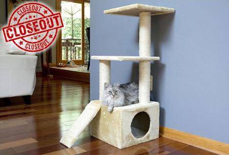 Multi cat household harmony