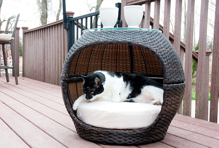 Rattan Hide-Away Pet Bed image 1