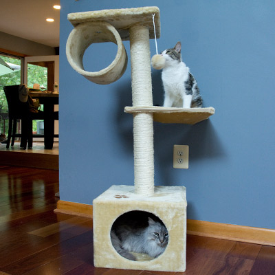 Three level cat tree condo with hammock - Cat hammock scratcher ...